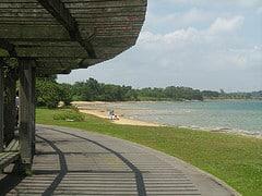 A Turning Viewpoint @ Pasir Ris Park