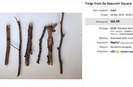 Twigs e bay