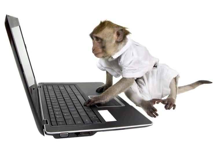 03-monkey
