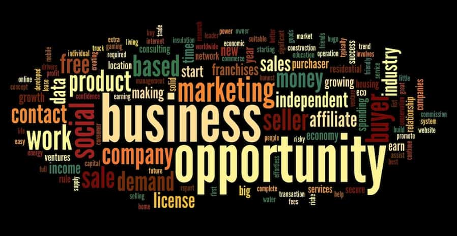 5 Types of Business Opportunities – Business Ideas