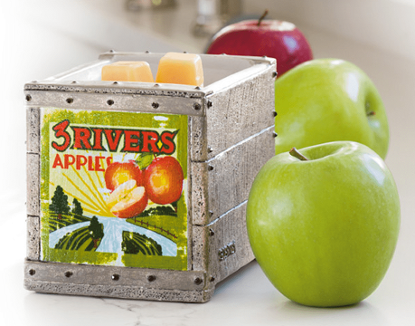 Scentsy Green Apples Product