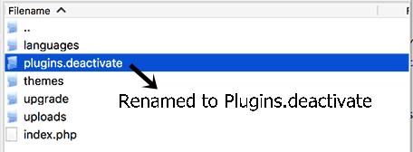 WordPress 503 error 3