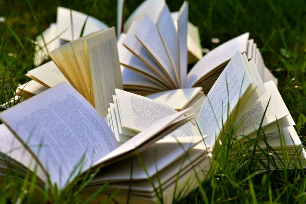 Book Reading for Entrepreneurs - featured image