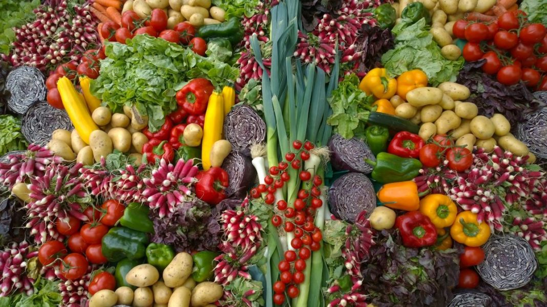 organic food delivery - featured image