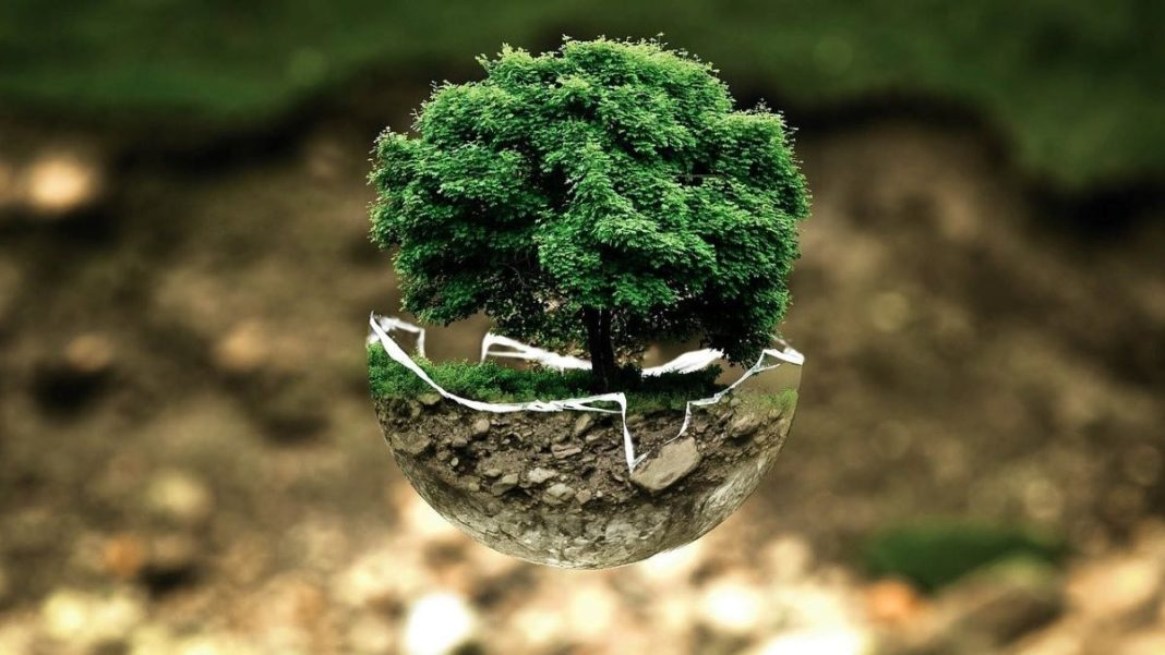 sustainable - featured image